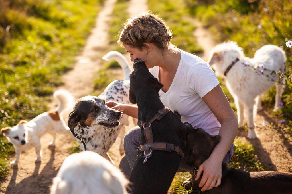 Hundetrainerin Anna Reddig